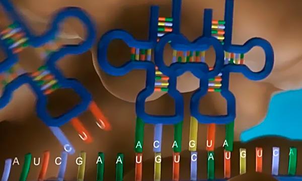 Edição de Genes e Saúde